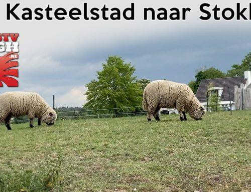 Van Kasteelstad naar Stokkum