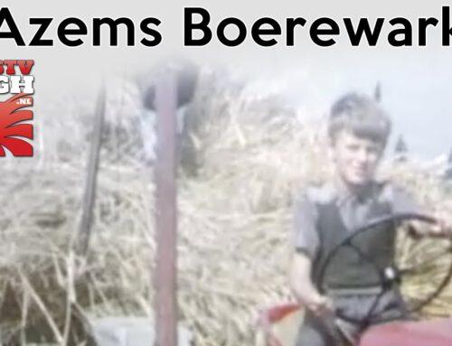 Azems Boerewark In De Jaren '60