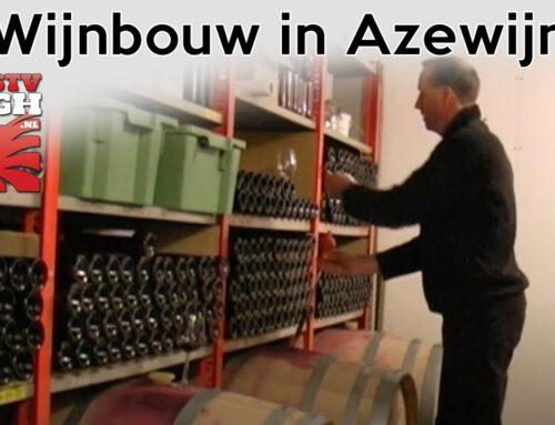 Wijnbouw in Azewijn